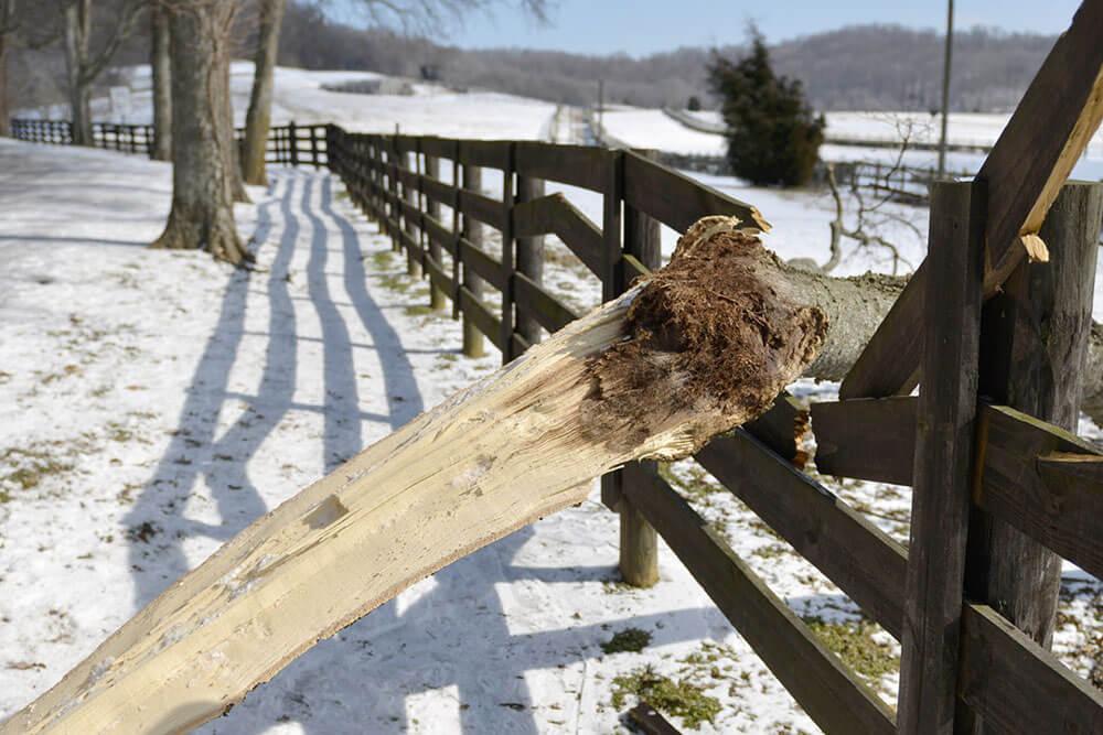 parke-company-emergency-services-tree-landscape-irrigation-maintenance-blog-Nashville-Ice-Storm-Wreaking-Havoc-on-Trees-broken-fence-header