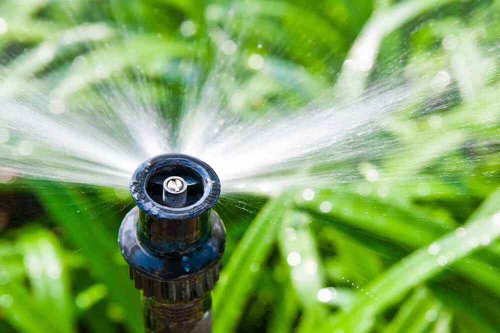 Irrigation system watering grass